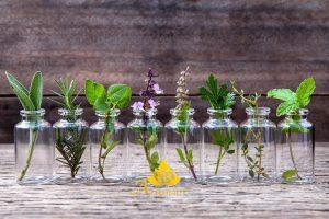 aromaterapija-arijamare-mirisna-ulja-bilje